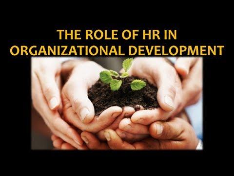 The Role of HR in Organizational Development