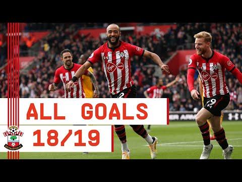 GOALS GOALS GOALS | Nathan Redmond's 2018/19 Southampton strikes