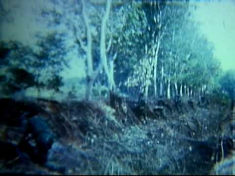 ACTIVITIES OF THE 1ST INFANTRY DIVISION, SOUTH VIETNAM