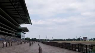 レースを開催していない日の府中競馬場の様子。 2016年7月24日日曜日.