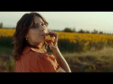Made in Italy - Scena film -  Luna di miele in Italia
