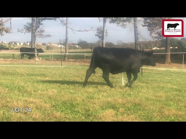 Powell Farms Lot 24