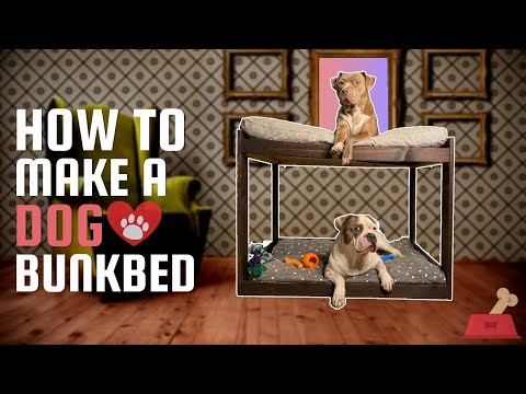 how-to-build-a-dog-bed-|-diy-dog-bed-|-how-to-make-a-dog-bed-|-dog-bed-ideas