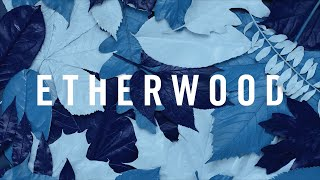 Etherwood ft.LSB - The Rain Will Fall