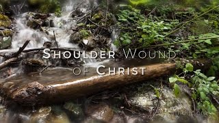 Shoulder Wound of Christ HD
