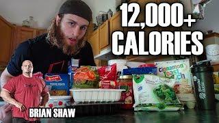 Teenager vs. World's Strongest Man Diet Challenge (12,000+ Calories)