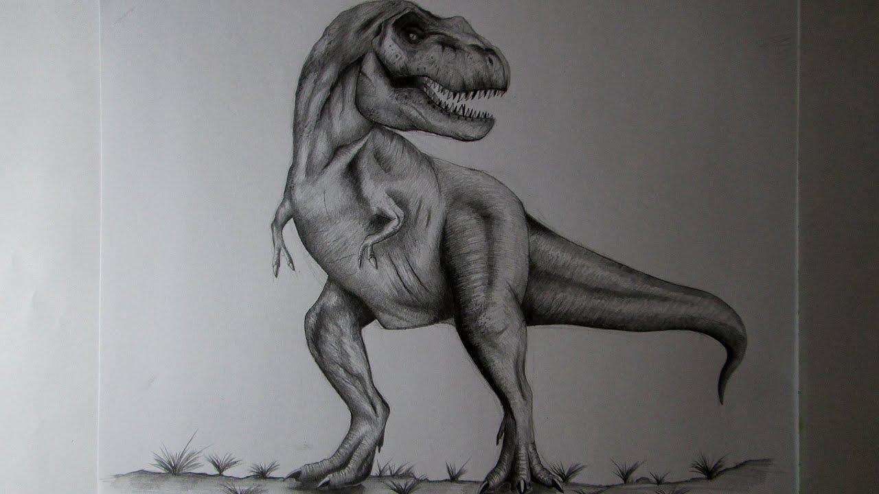 Cómo dibujar un Tiranosaurio Rex a lápiz paso a paso, cómo dibujar ...