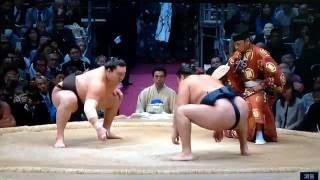 November 2016 - Day 13 - Hakuho v Kakuryu