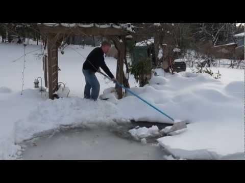 Winter Care For Your Koi Pond Watergarden How To