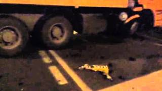 В Воронеже такси столкнулось с грузовиком: водитель легковушки погиб(, 2015-06-19T08:27:55.000Z)