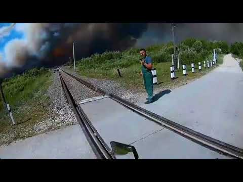 Происшествия  Мордовия  Лесной пожар у Свеженькой 23 06 2019 1