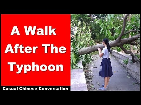 A Walk After The Typhoon - Learn Intermediate Chinese Conversation and Vocabulary