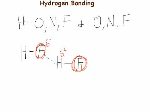 Intermolecular Forces 1: Hydrogen Bonding
