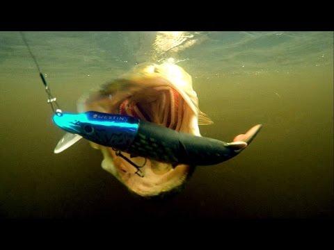 Fishing In Ireland: 7 Pike Wt Mike Lure. TEASER.  Рыбалка в Ирландии: 7 щук на Майка.