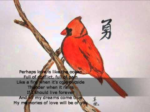 Perhaps Love - John Denver & Placido Domingo