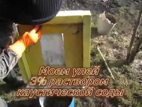 Дезинфекция пенополистирольных ульев