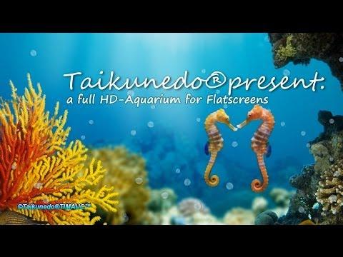 Taikunedo®Union-AquaRelax™2014 Full HD