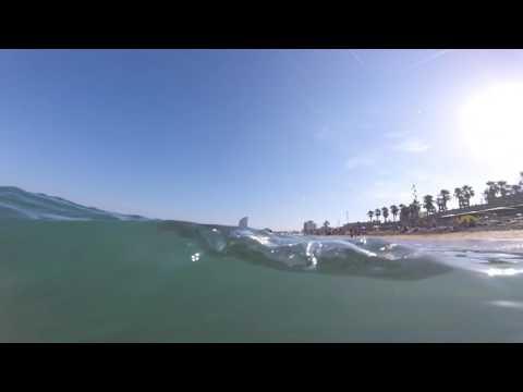 Barcelona Beach Man Shark