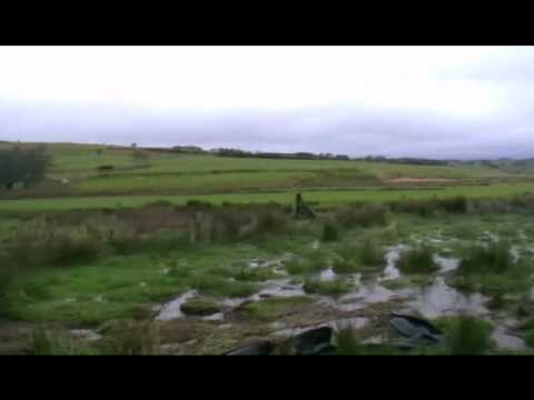 cerrig duck shooting at (anthony davies) place  part 1
