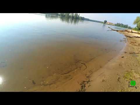 Цветет ли река Черемшан в июле?