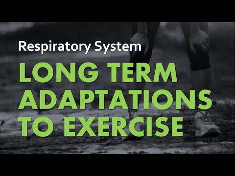 Anatomy & Physiology | Respiratory System 07 - Adaptations To Exercise