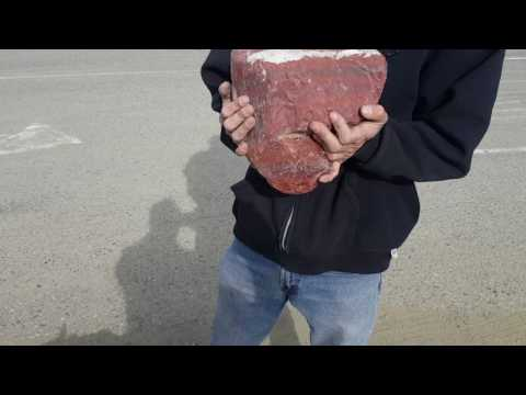 Vacationsensei - travel Arizona With a rock and mineral prospector