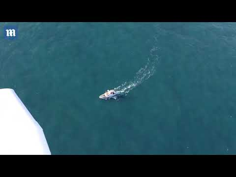 Underwater search for Emiliano Sala's plane gets underway