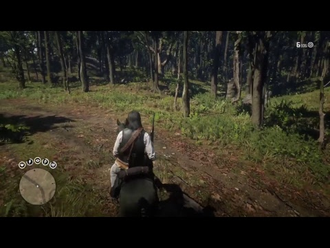 NEW!!!! Easter egg for Red Dead redemption 2 ! Dutchess PRINCESS!