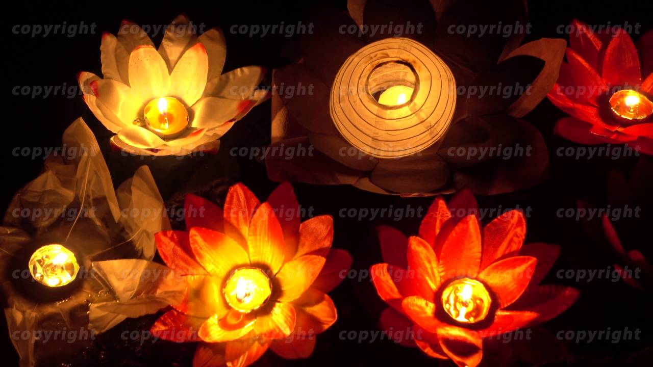 Floating Lotus Flower Paper Lanterns On Water Youtube