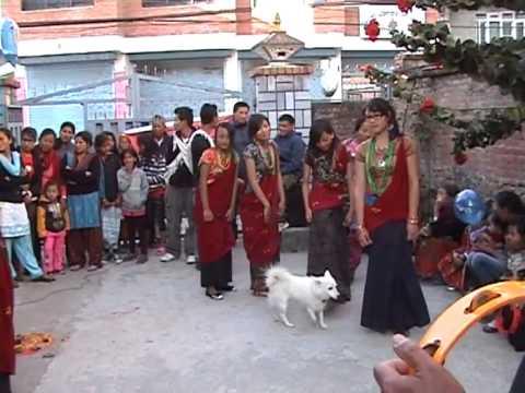 sankhuwasabha Tamu Deusi Bhailo 2069