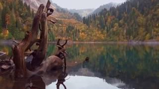 видео Достопримечательности Абхазии с описанием и фото