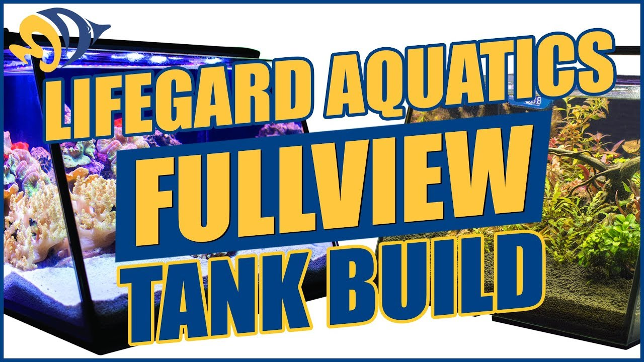 Full View Aquariums: We Built a Nano Reef and a Planted Tank — YOU CAN WIN BOTH! Thumbnail