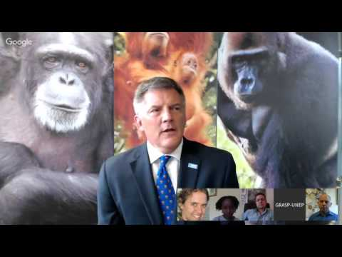 Webcast EP 6 - Great apes, Ebola and Vaccinations