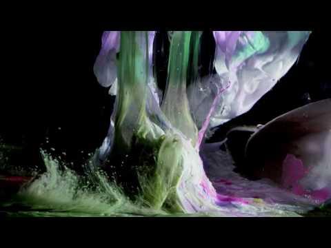Kikagaku Moyo - Trilobites (Official Music Video)