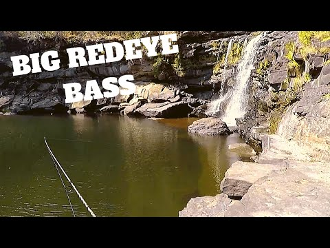 REDEYE BASS In Alabama Waterfall