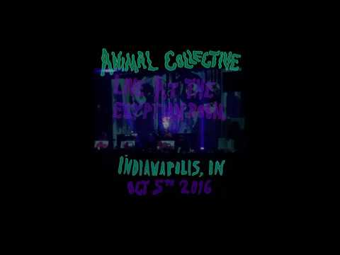Animal Collective Live at The Egyptian Room 10-05-2016 Indianapolis, IN