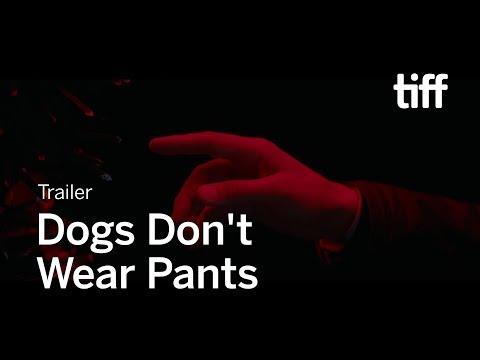 DOGS DON'T WEAR PANTS Trailer | TIFF 2019
