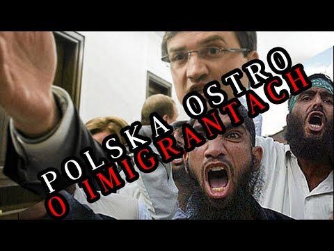 Gwałt na Polce we Włoszech - Brawa dla Polski! | Daily News #7