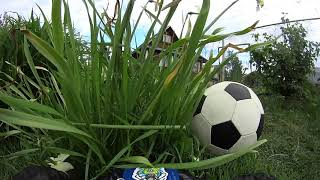 Монстр-трак футбол. Rocket League на дистанционном управлении.