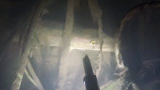Подводная охота 2020 начало года
