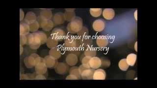 Christmas At Plymouth Nursery
