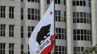 California Bear Flag, Bank of America Building, San Francisco