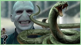 What if Nagini Was Real?