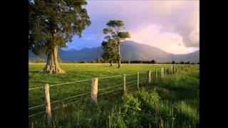 Folk Songs - Turkey in the Straw