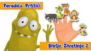 PORODICA PRSTICI - DIVLJE ZIVOTINJE - SONG 2