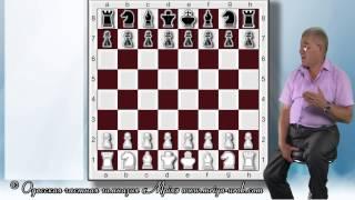 Урок 17. Как не нужно играть в шахматы