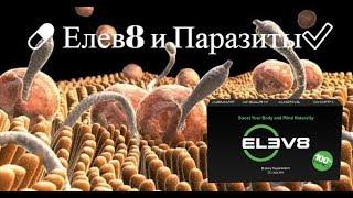 💊 Елев8 и Паразиты ! Elev8 Состав Отзывы и Результаты  ✅ Bepic