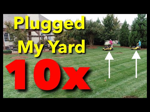 Over 30 Lawn Care Tips In ONE Video / Aeration & Over-Seeding