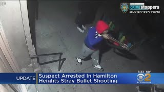 Suspect Arrrested In Hamilton Heights Stray Bullet Shooting