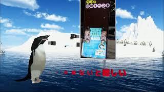 南極一号放送局 【視聴枠】ダーウィンが来た!の生放送を見る会